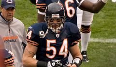 brian urlacher close to vikings deal [report]